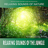 Relaxing Sounds of the Jungle (Sounds of Nature) de Healing Sounds for Deep Sleep and Relaxation