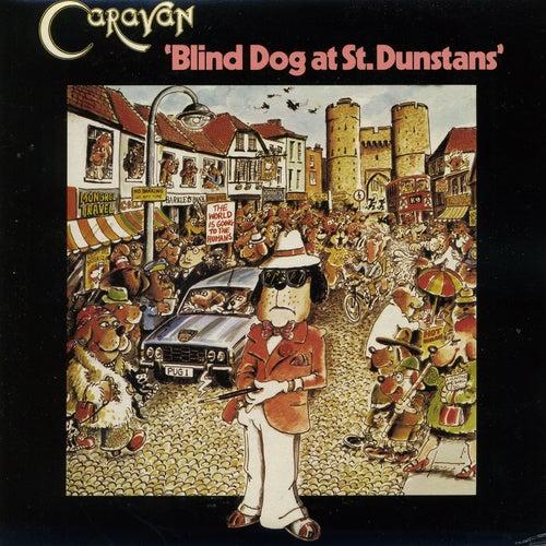 Blind Dog at St.Dunstans by Caravan