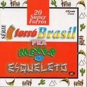 Série Forró Brasil : 20 Super Forrós - Pra Mexer o Esqueleto de Vários Artistas