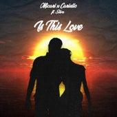 Is This Love de Micari
