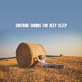 Soothing Sounds for Deep Sleep: Calm Music for Relaxation, Melodies of the Saxophone by Sleep Sound Library