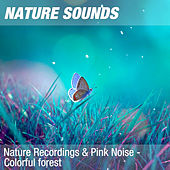Nature Recordings & Pink Noise - Colorful forest by Nature Sounds (1)