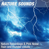 Nature Recordings & Pink Noise - Rain and thunder clouds by Nature Sounds (1)
