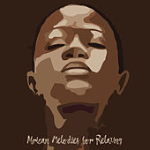 African Melodies for Relaxing: Drums and Flute, Sunset Desert, Exotic Nature de Nature Sounds Artists