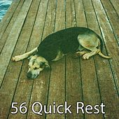 56 Quick Rest by Ocean Waves For Sleep (1)