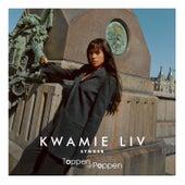 Synger Toppen Af Poppen by Kwamie Liv