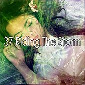 37 Riding the Storm by Rain Sounds (2)