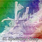 61 Specialised Sleep by Ocean Sounds Collection (1)