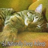 51 Naturally Deep Asleep de Lullaby Land