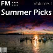 FM Summer Picks - Volume 1 by Various Artists