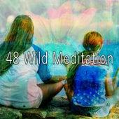 48 Wild Meditation by Deep Sleep Meditation