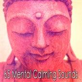 65 Mental Calming Sounds von Entspannungsmusik