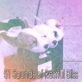 51 Sounds of Restful Bliss de Relajacion Del Mar