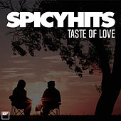 SPICYHITS - TASTE OF LOVE von Various Artists