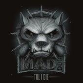 Till I Die di DJ Mad Dog