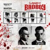 Bad Boy de Landy