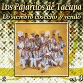 La Siembro Cosecho Y Vendo by Los Pajaritos De Tacupa