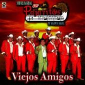 Viejos Amigos - Los Pajaritos De Tacupa by Los Pajaritos De Tacupa