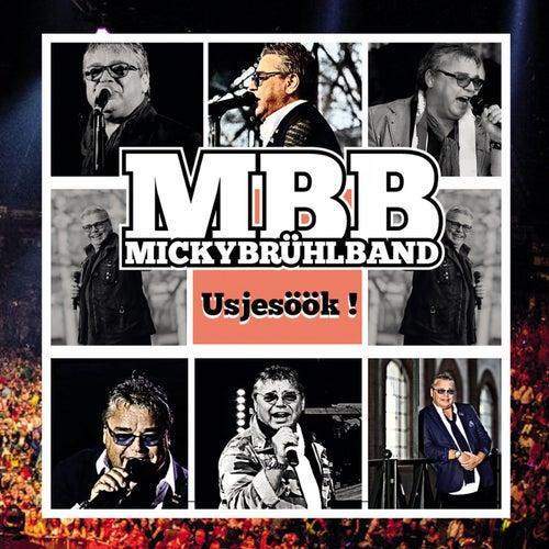 Usjesöök von Micky Brühl Band