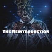 The Reintroduction by DudeWitDaHawk