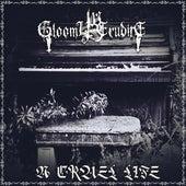 A Cruel Life de Gloomy Erudite