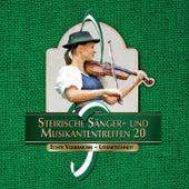 Steirische Sänger- und Musikantentreffen 20 by Various Artists
