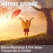 Nature Recordings & Pink Noise - Tranquil rain & crickets by Nature Sounds (1)