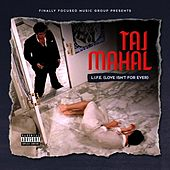 L.I.F.E (Love Isn't for Ever) by Taj Mahal