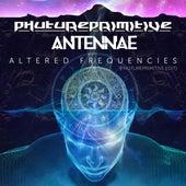 Altered Frequencies (Phutureprimitive Edit) de Phutureprimitive
