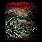 Into the Catacombs of Flesh de Fleshcrawl