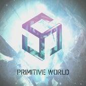 Primitive World de Mystic