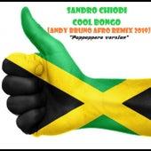Cool Bongo (Andy Bruno afro remix 2019) di Sandro Chiodi