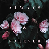 Always & Forever by Lily Kershaw