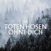 Ohne Dich (Ohne Strom) de Die Toten Hosen