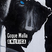 América de Coque Malla