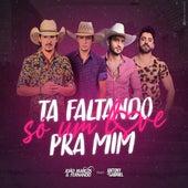 Ta Faltando Só um Love pra Mim de Joao Marcos & Fernando