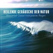 Heilende Geräusche der Natur: Wasserfall, Ozean, Instrumente, Regen - Gesundheit, Entspannung, Guten Schlaf von Verschiedene Interpreten