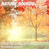 Nature Recordings & Pink Noise - Woodland scenery by Nature Sounds (1)