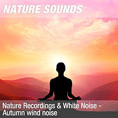 Nature Recordings & White Noise - Autumn wind noise by Nature Sounds (1)