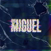Los Miguel de Miguel (3)