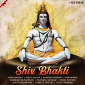 Shiv Bhakti by Srinivasa Sarma