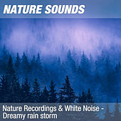 Nature Recordings & White Noise - Dreamy rain storm by Nature Sounds (1)