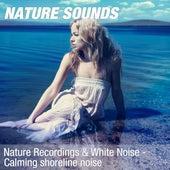 Nature Recordings & White Noise - Calming shoreline noise by Nature Sounds (1)