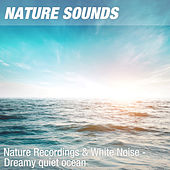 Nature Recordings & White Noise - Dreamy quiet ocean by Nature Sounds (1)