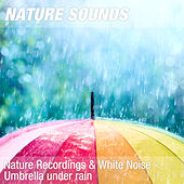 Nature Recordings & White Noise - Umbrella under rain by Nature Sounds (1)