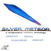 Silver Meteor: A Progressive Country Anthology by Various Artists