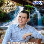 Tu Eres el Agua Viva de Rey Eduardo