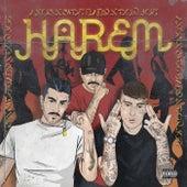 Harem by Axos
