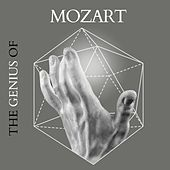 Mozart - The Genius Of von Various Artists