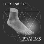 Brahms - The Genius Of de Various Artists